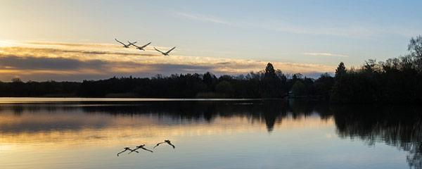 peaceful nh lake